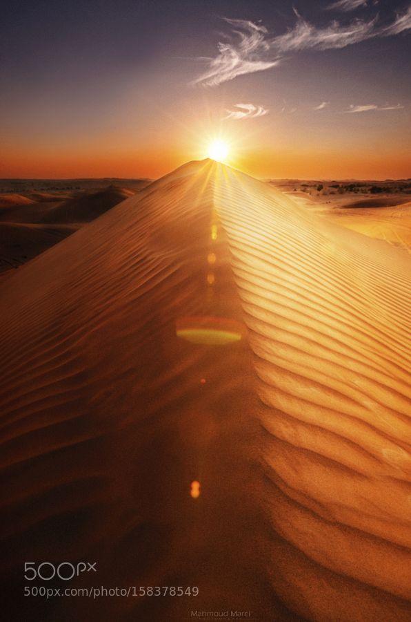 Kingdom Of Sand by mahmoud_marei89. Please Like http://fb.me/go4photos and Follow @go4fotos Thank You. :-)