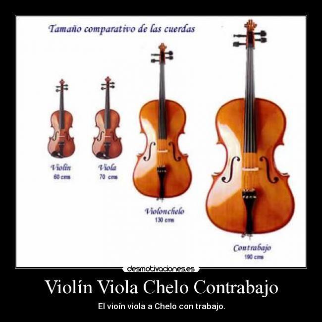 Violin Viola Violonchelo Y Contrabajo Viola Music Old Musical Instruments Music Instruments