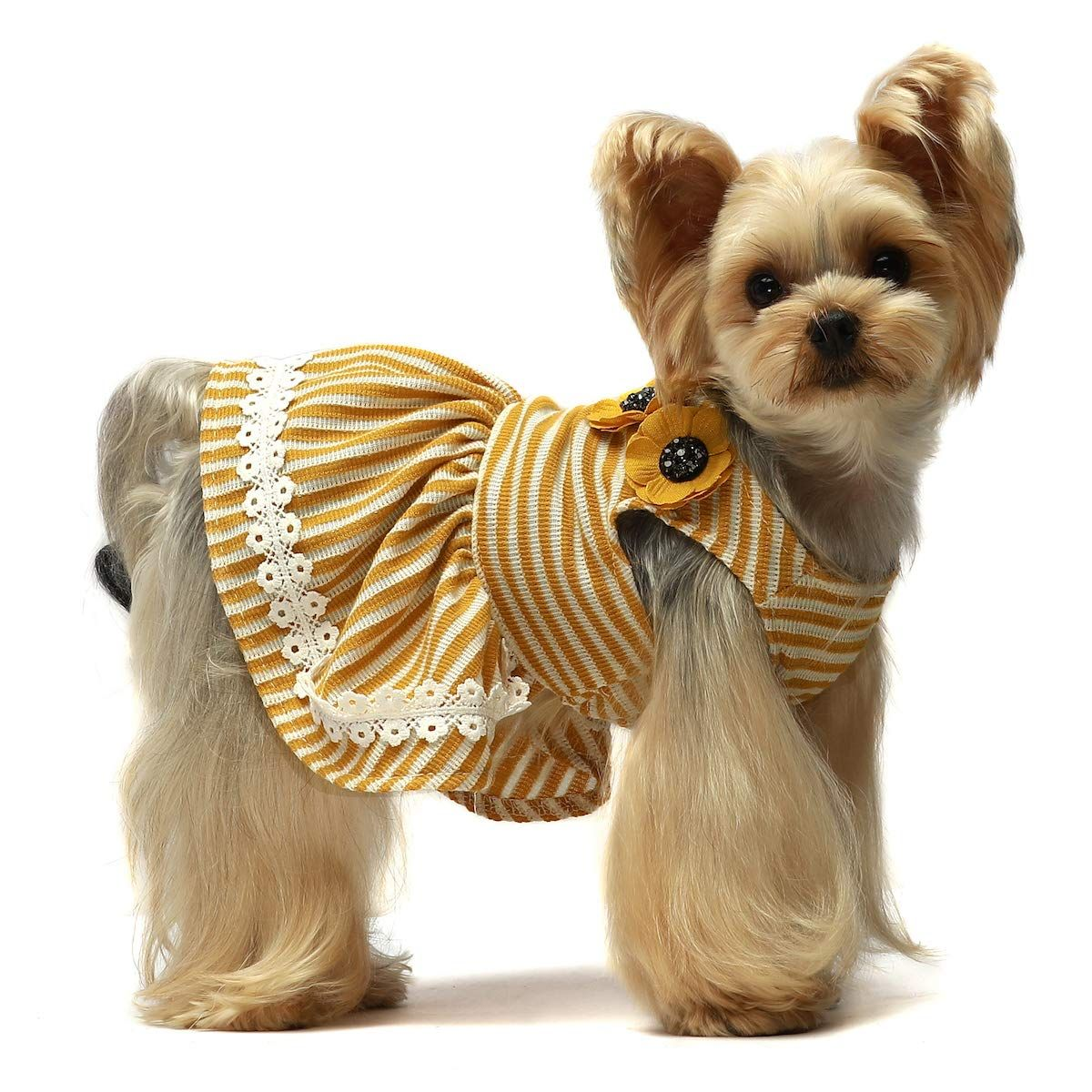 Fitwarm Flowers Pet Clothes For Dog Dresses Vest Shirts Sundress Mustard Yellow Learn More By Visiting The Image Pet Clothes Dog Clothes Dog Harness Dress [ 1200 x 1200 Pixel ]