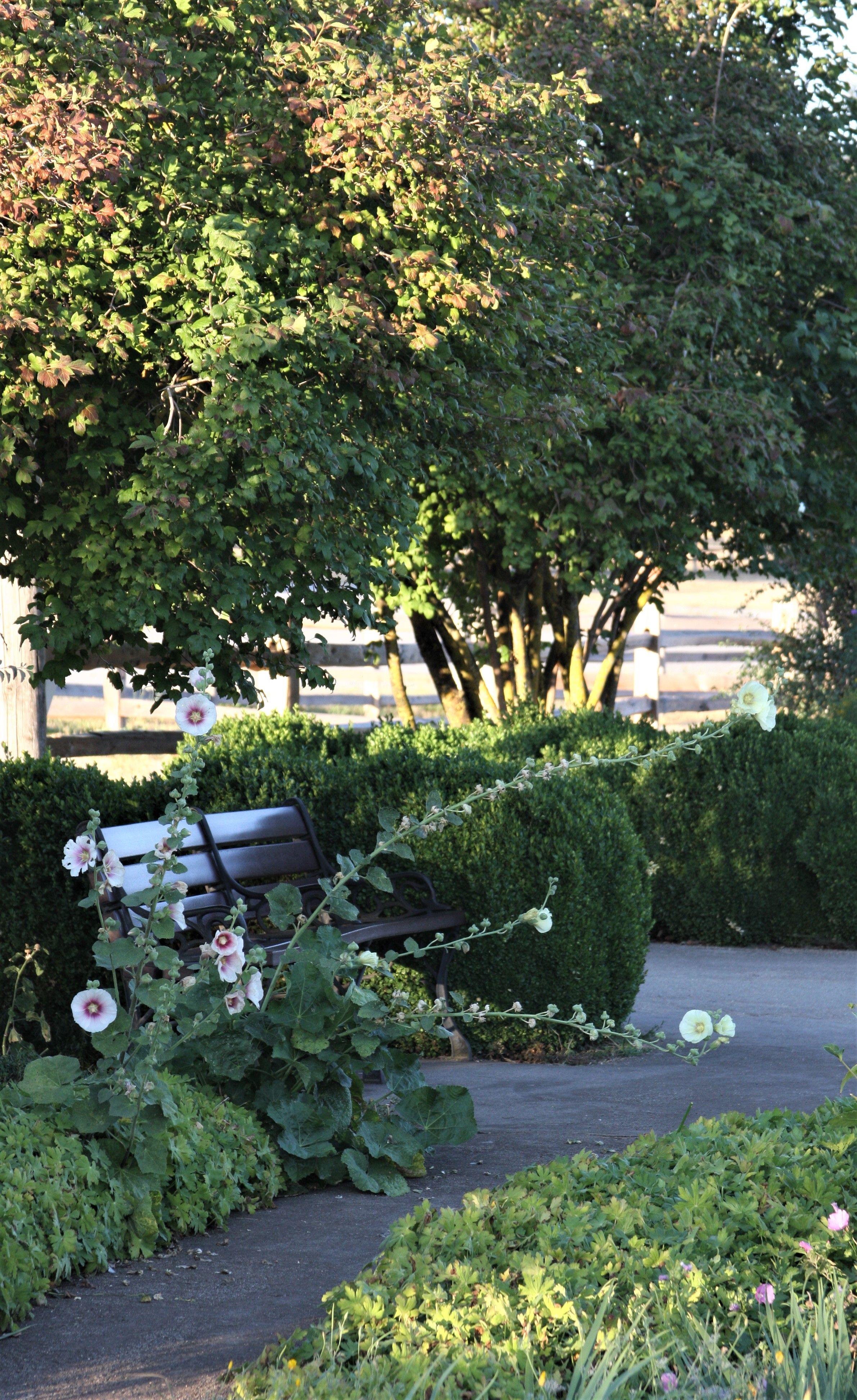 Garden Bench Fort Garden Vancouver Washington 09 2018