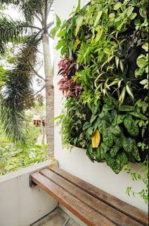 Taman Vertikal Indonesia