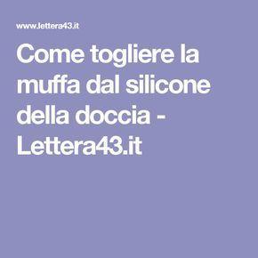 Come Togliere La Muffa Dal Silicone Della Doccia Lettera43 It