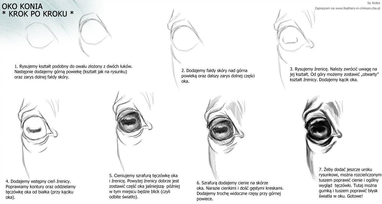 Horse Eye Tutorial By Ardea4 Lippencilhowtouse In 2020 Horse