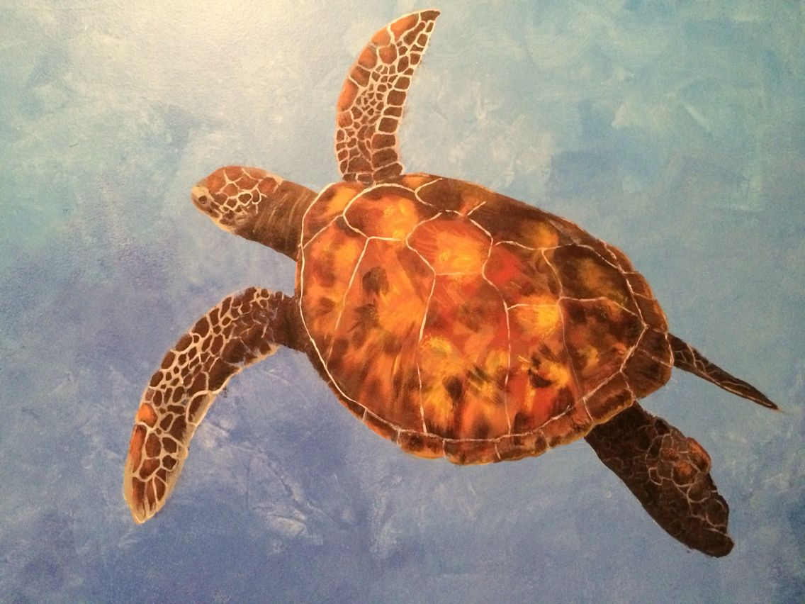 Top side view of sea turtle I painted on wall with acrylics