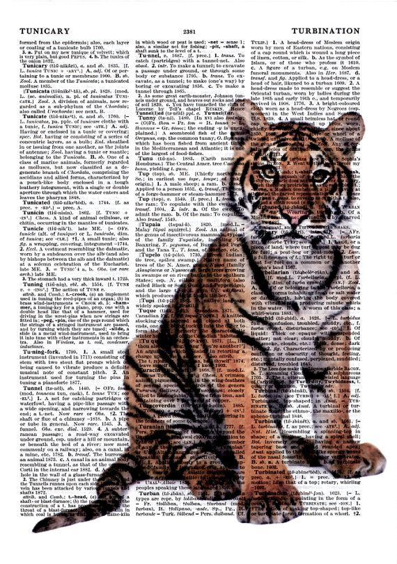 Dictionary Art Print Digital Ilration Vintage Posters Wall Decor Kids Home Living Gifts Ideas Animals More Tiger