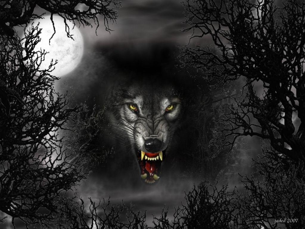 3840x2370 Wolf 4k Pc Wallpaper Wolf Wallpaper Animal Wallpaper Art Wallpaper