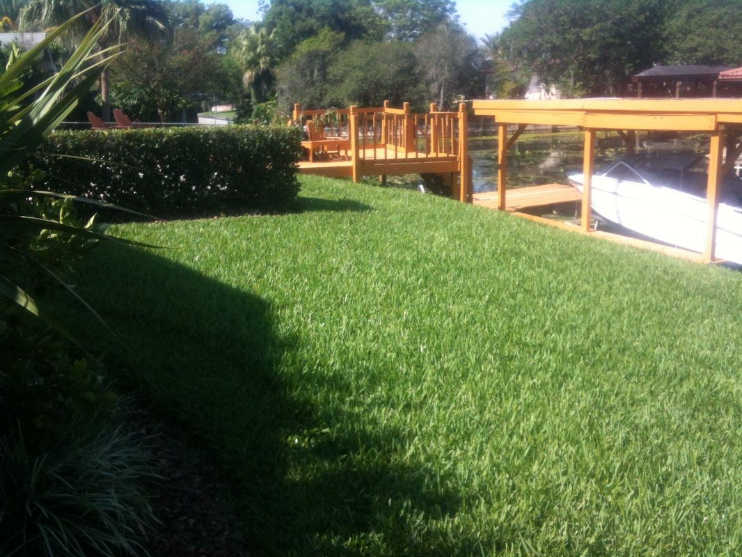 Are you searching a lawn care system for an attracting