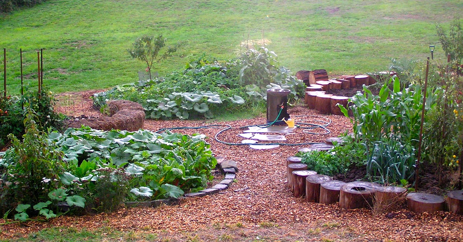 logs in gardens | logs for raised beds & borders | I'm in the garden