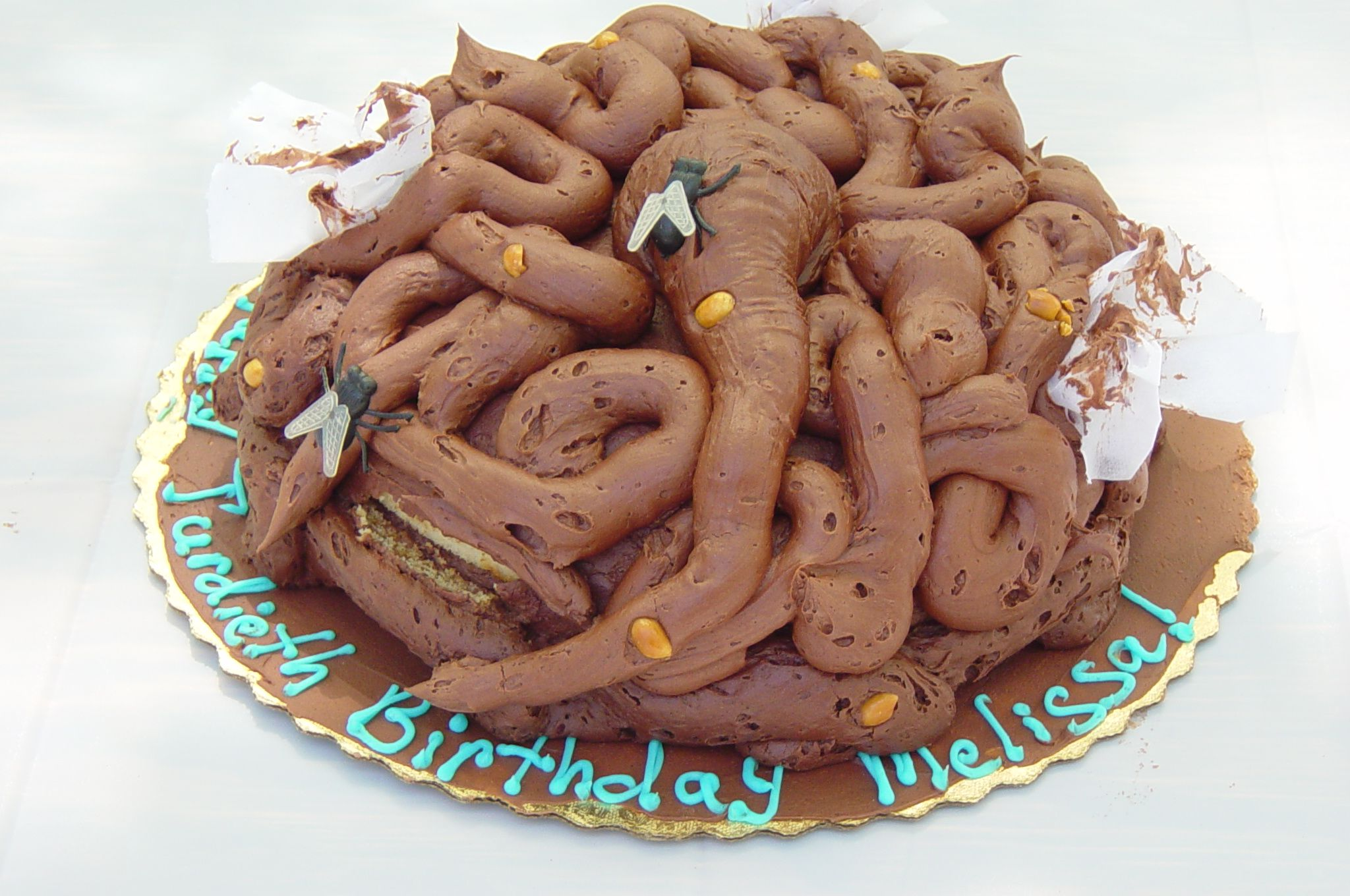 Ewww grossest cake ever - terd, crap, shit cake with flies and toilet paper too! Happy birthday?