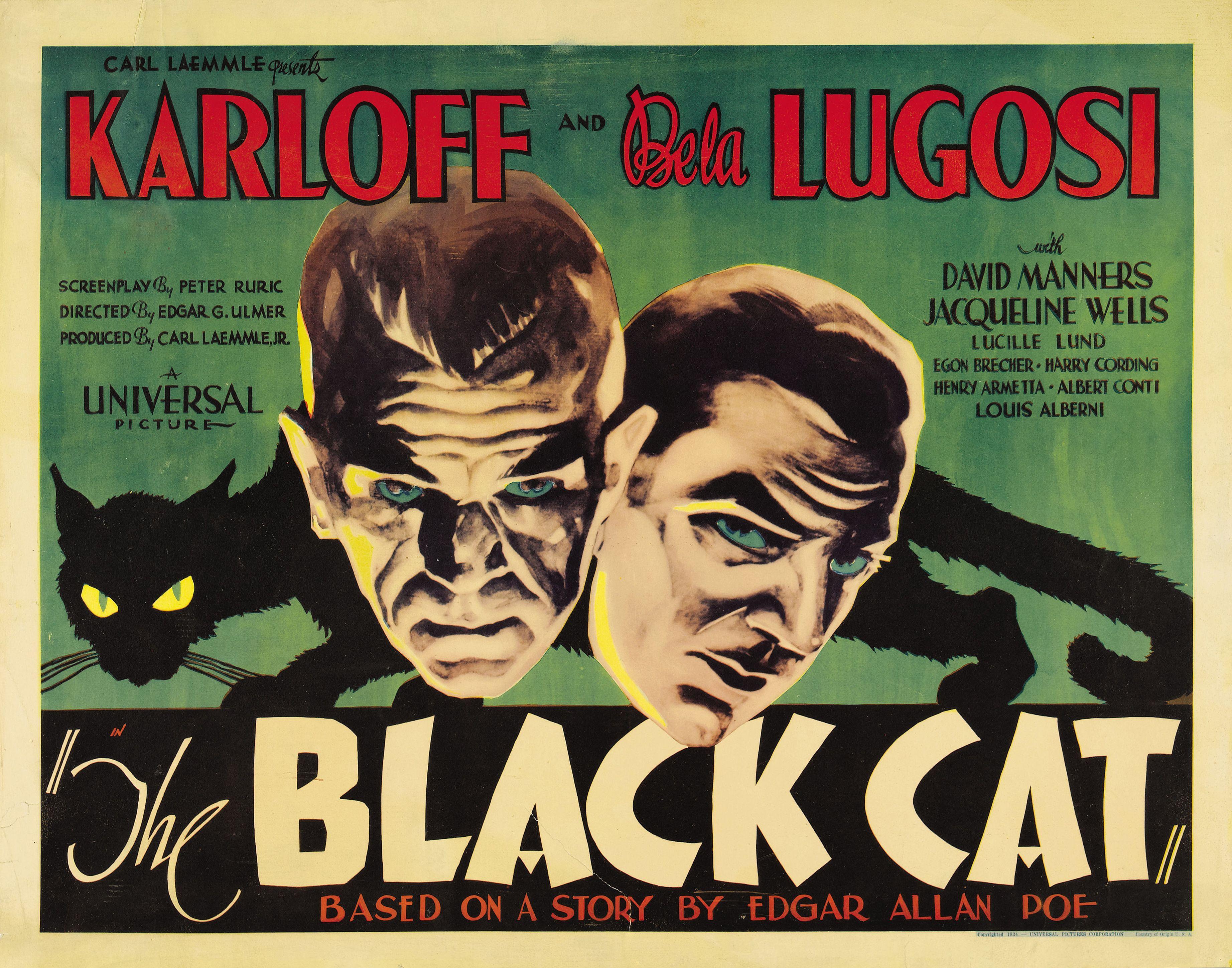 the black cat via doctormacro black cats pinterest black cats