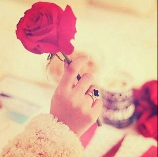 Pin By Princezz Arina On Dpzzz Rose In Hand Hand Holding Rose Hand Pictures