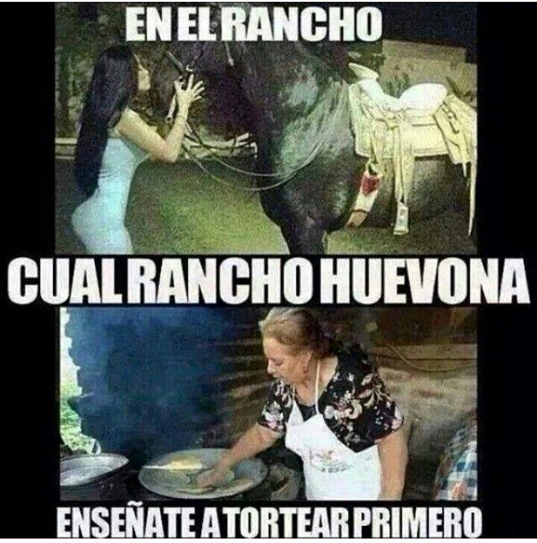 Senoras Del Rancho Mexican Jokes Funny Memes Funny