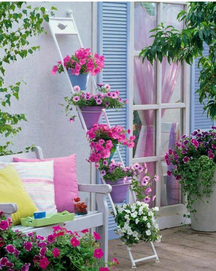 Tiny flower garden