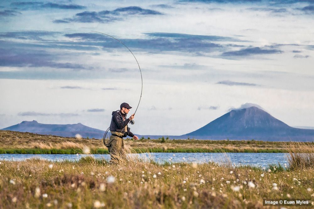 NC500 Fishing - Best Trout Lochs & Rivers in North Sutherland - Loch
