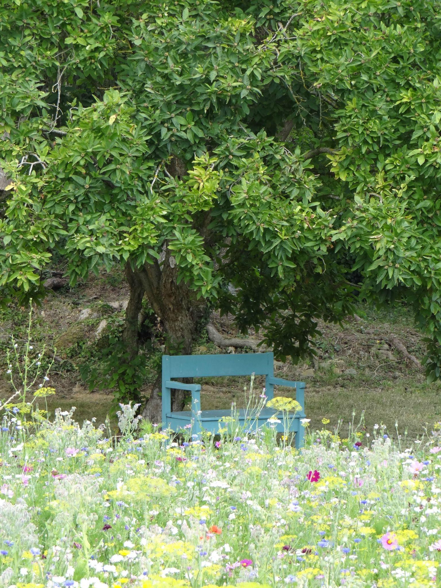 0d3425465094aa624e0782f3253da3a5 Meilleur De De Boule Deco Jardin Des Idées