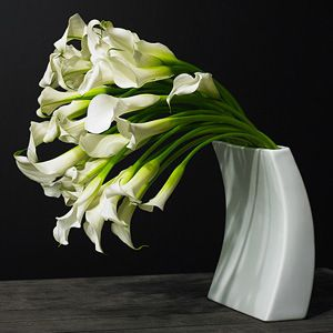 Gifts Cornerstone Travel And More Flower Arrangements Calla Lily Flower Landscape