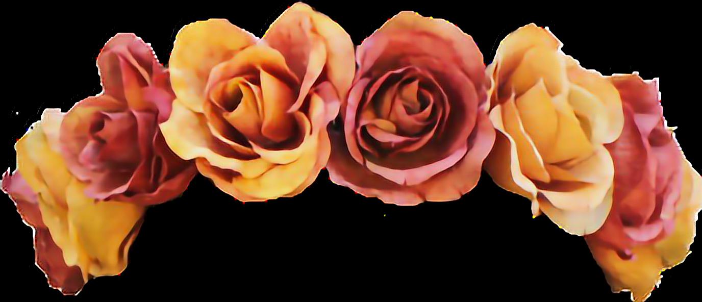 Flowers Flowercrown Crown Tumblr Orange Colorful Tumblr Flower Flower Crown Crown Tumblr