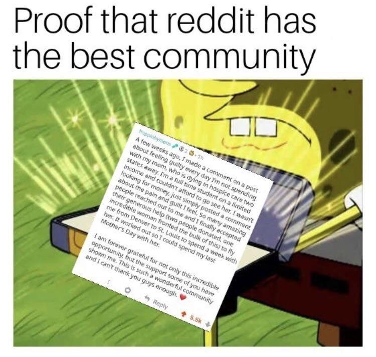 Memes 2019 Memes Reddit Memes Funny Memes About Love Memes To Draw Memes About L Memes Jokes Funny Humor Love Memes Funny Funny Memes Stupid Funny