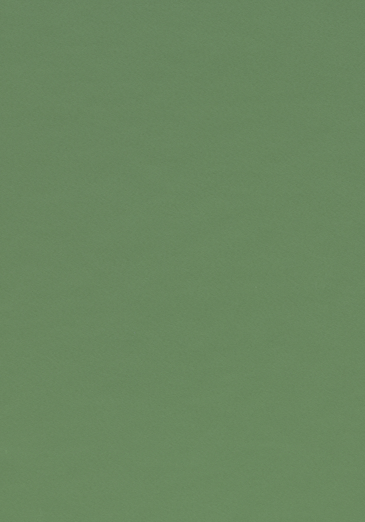 Linoleum Grau Colour Olive 4184 Desktop Furniture Linoleum Forbo Olive