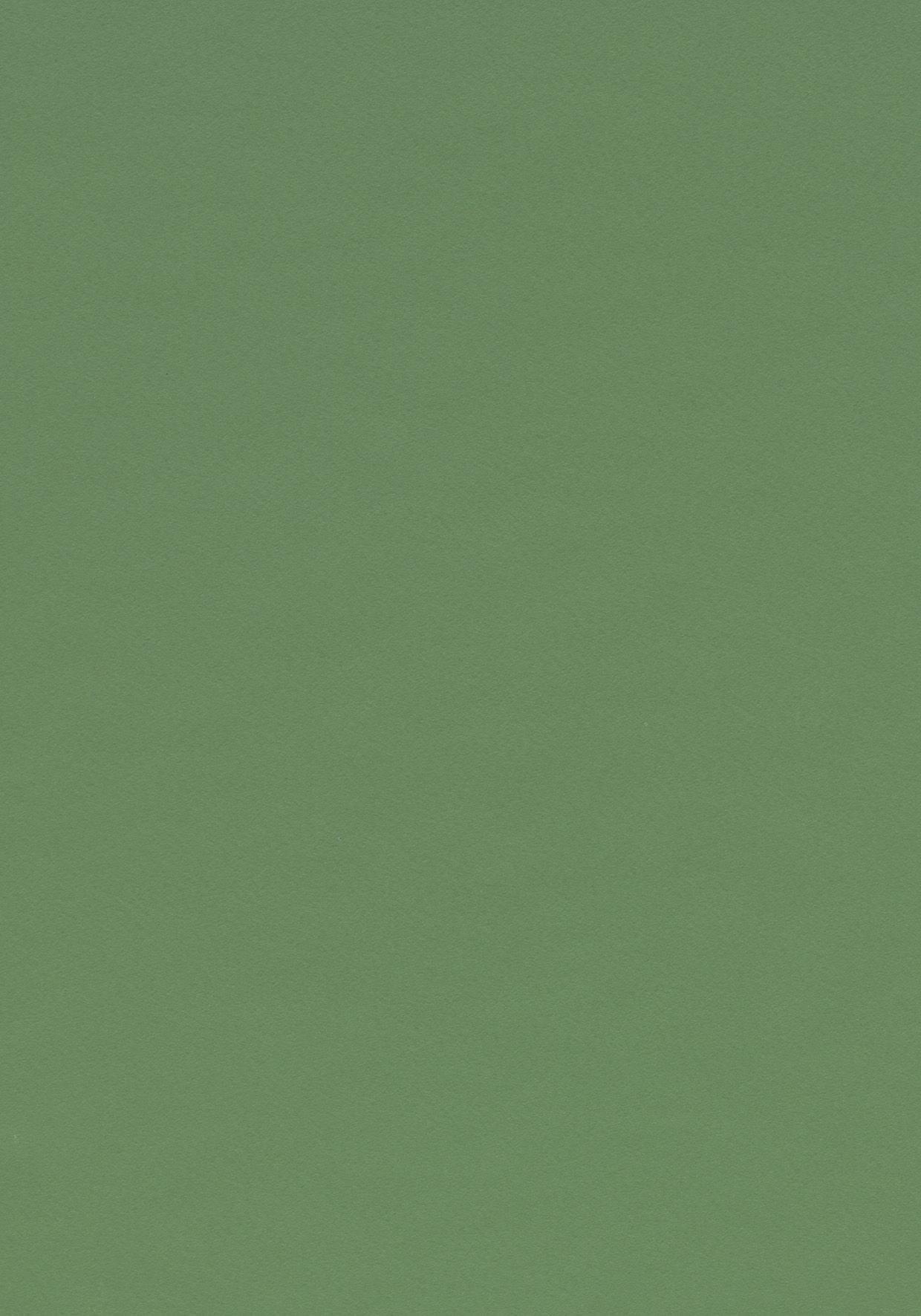 colour olive 4184 desktop furniture linoleum forbo olive green olivegreen mit. Black Bedroom Furniture Sets. Home Design Ideas