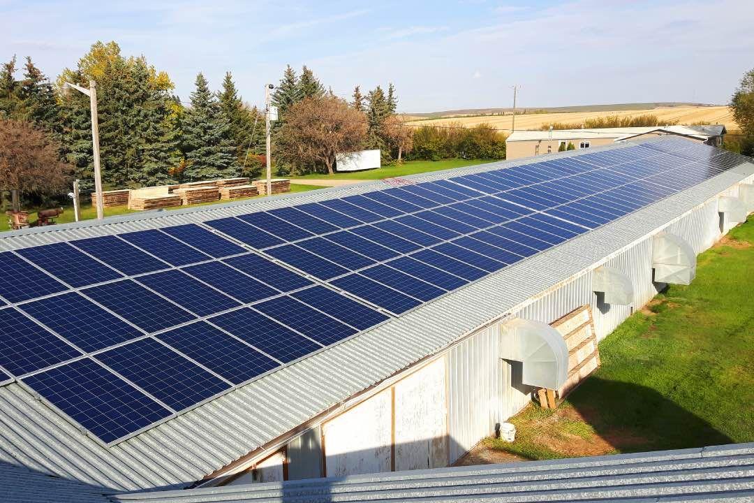 Farm Solar Klassen 1 Solar Solar Power System Poultry Farm