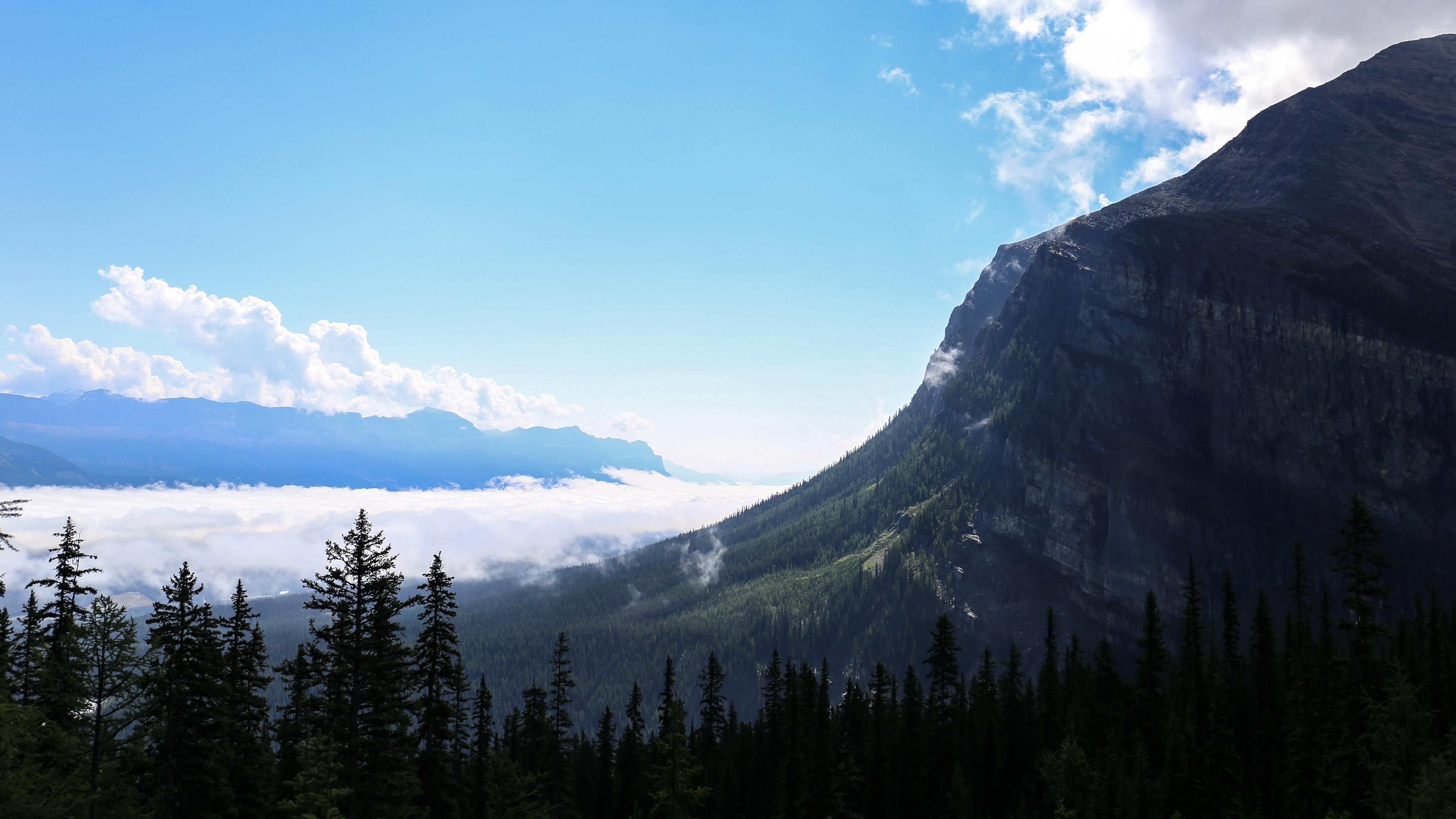 Making our way up to big beehive in alberta canada oc