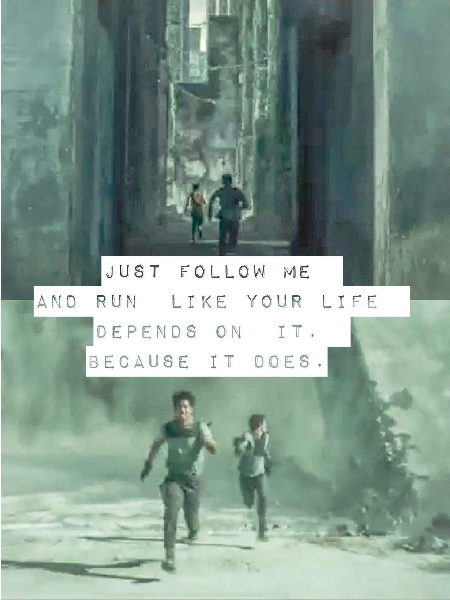 Maze Runner Quotes Minho And Thomasthe Maze Runner Can Not Wait  Movies .