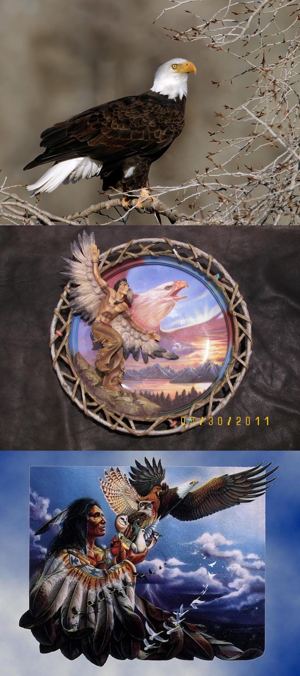 Native American Blue Eagle