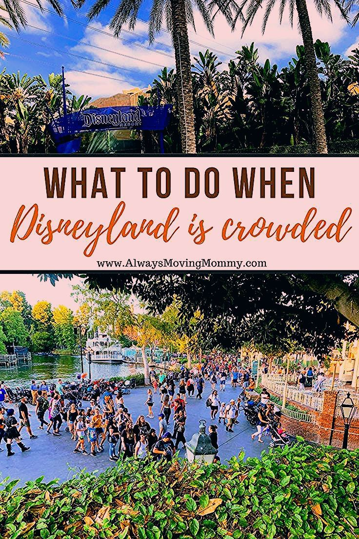 Photo of Disneyland Crowds: 5 Hot Survival Tips For the Busiest Days • Always Moving Mommy