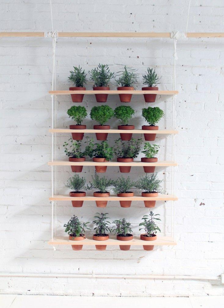 Diy Hanging Garden Shelves For A Small Space Diy Herb Garden Hanging Garden Outdoor Herb Garden