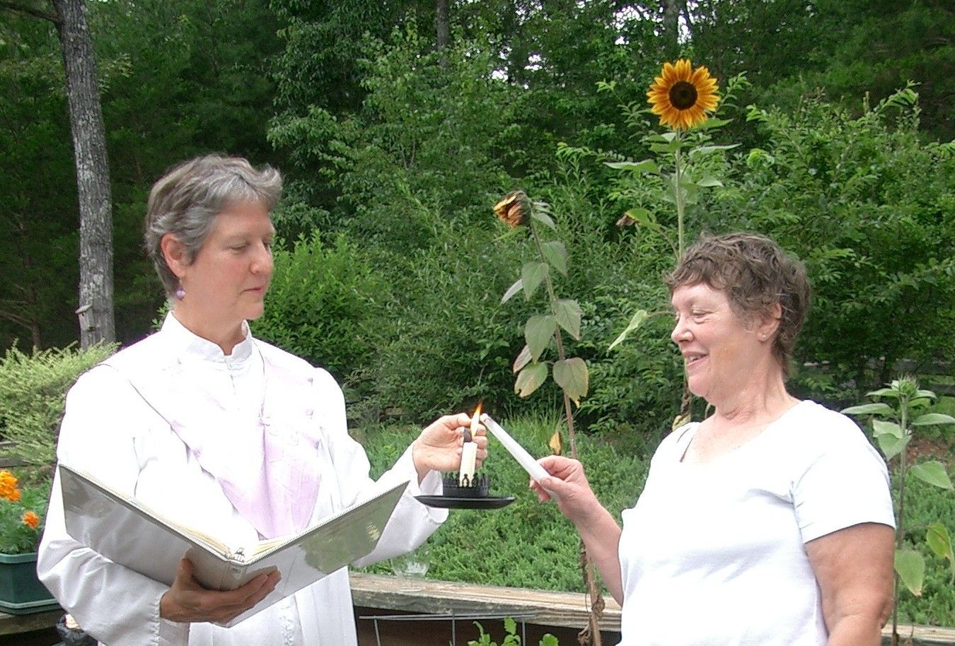 If You Feel A Calling To Become A Wedding Officiant Rev Dr Barbara Roberts Can Help You With That She Wedding Officiant Outdoor Wedding Alternative Wedding