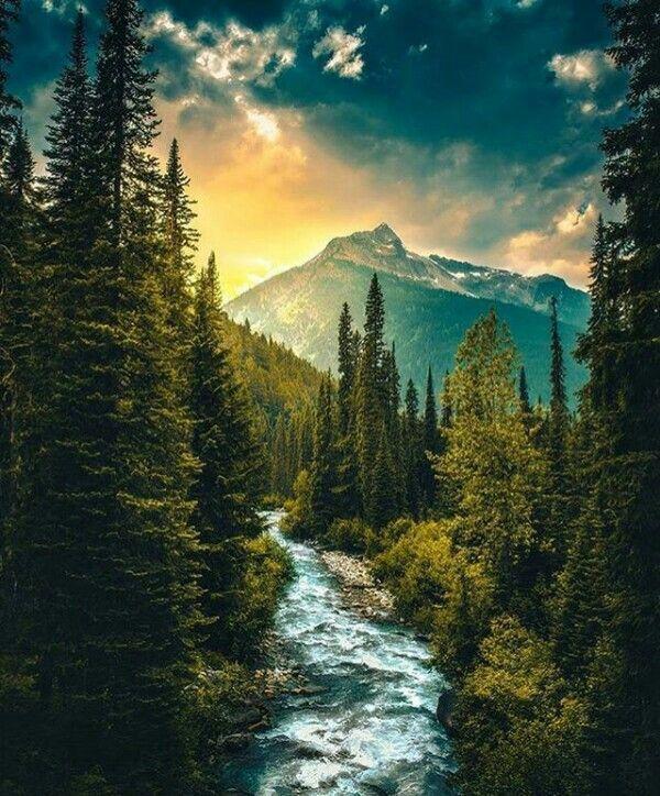 Naturaleza Nature Naturephotography River Forest Mountains Magiccolors Nature Photography Nature Pictures Beautiful Nature