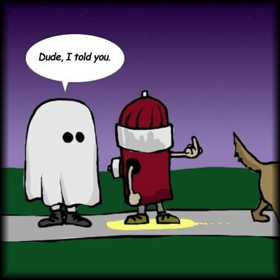 Ha Ha Ha Funny Halloween Jokes Halloween Jokes Halloween Funny