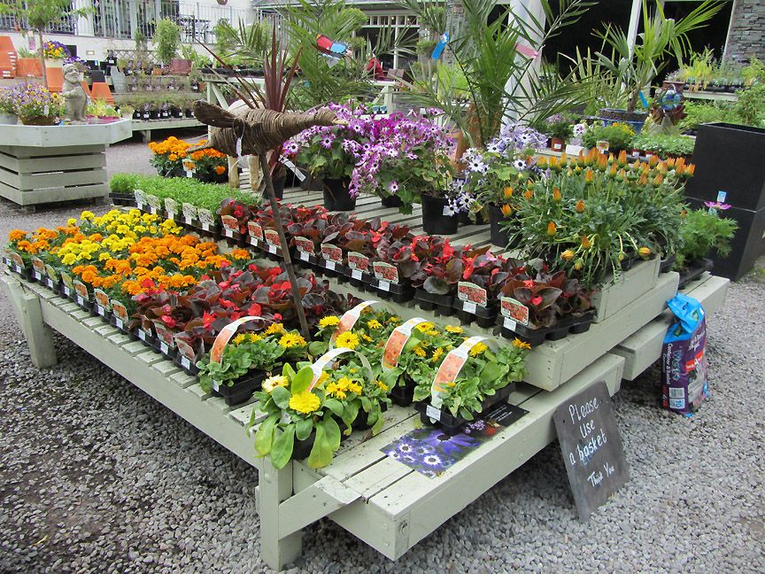 Greenhouse pottery displays google search plant for Garden display ideas