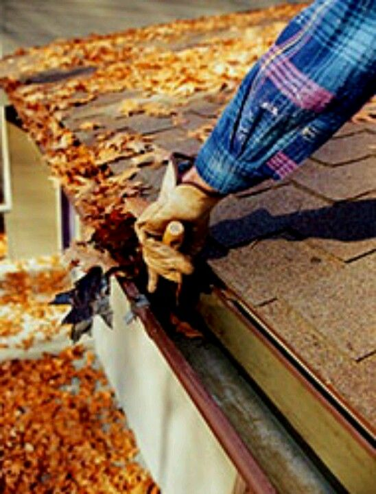With the warmer weather, its time to clean out gutters and downspouts. Accumulated debris can provide habitat for insects, like mosquitos. Check downspouts to ensure they direct all water away from your home. Call us at Optimum Services. 416-987-8388 or visit us at http://www.opti-services.ca/
