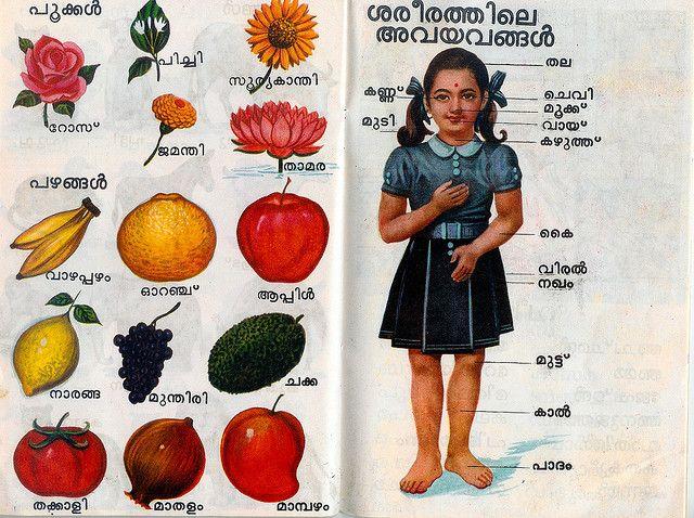 Know Your Fruits Malayalam Simple Life Hacks Visual Photo