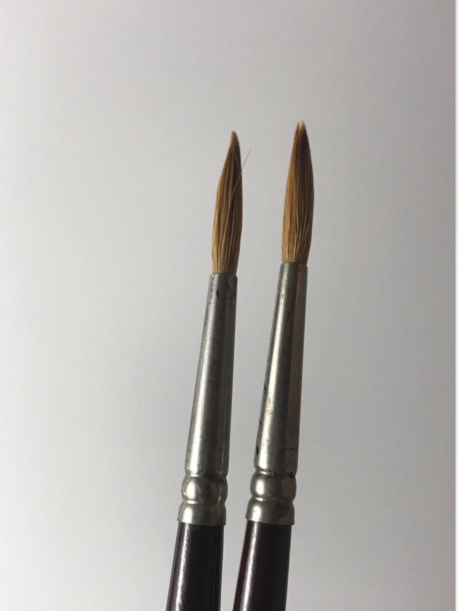 Winsor Newton Series 3a Brush 5 Sable Watercolor Brush