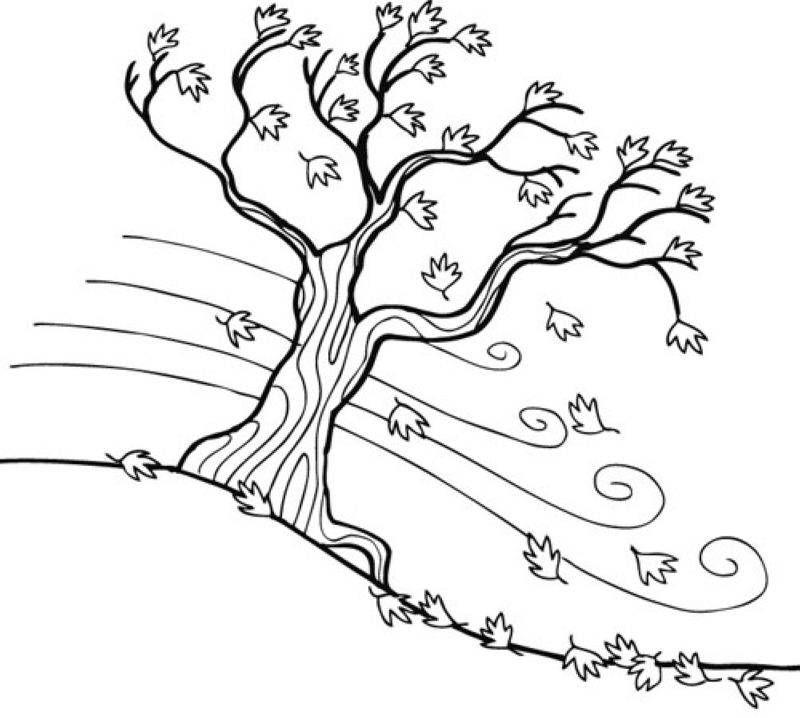 ausmalbild herbst herbstbaum kostenlos ausdrucken