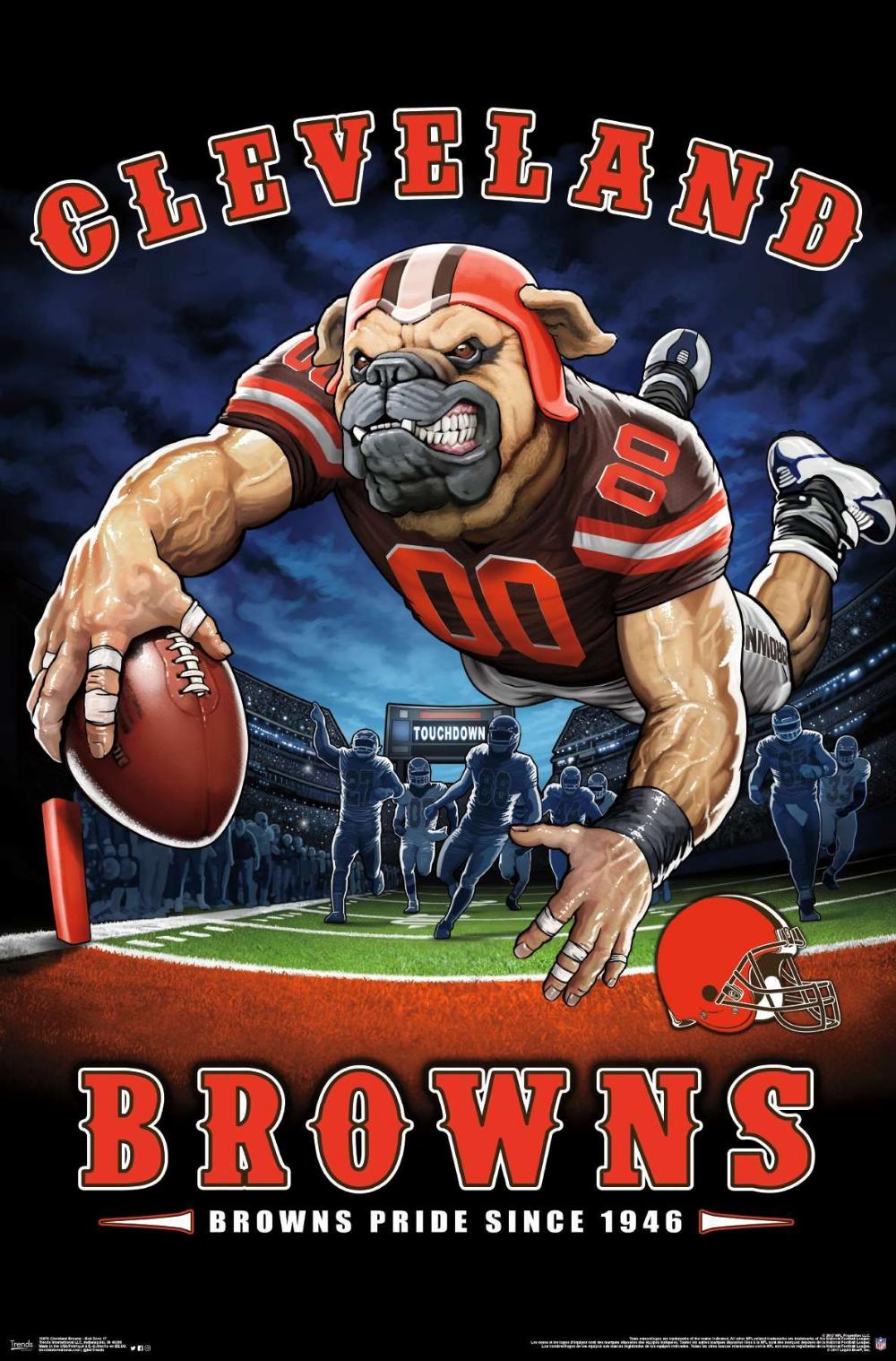 Nfl Cleveland Browns End Zone Nfl Cleveland Browns Cleveland Browns Football Football Poster