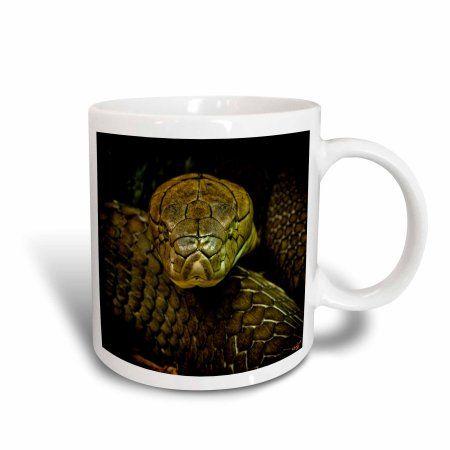 3dRose Cobra Snake Green Coiled, Ceramic Mug, 11-ounce
