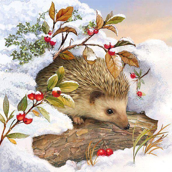 Serviette Igel Im Schnee Hedgehog Art Igel Illustration Weihnachten Tiere