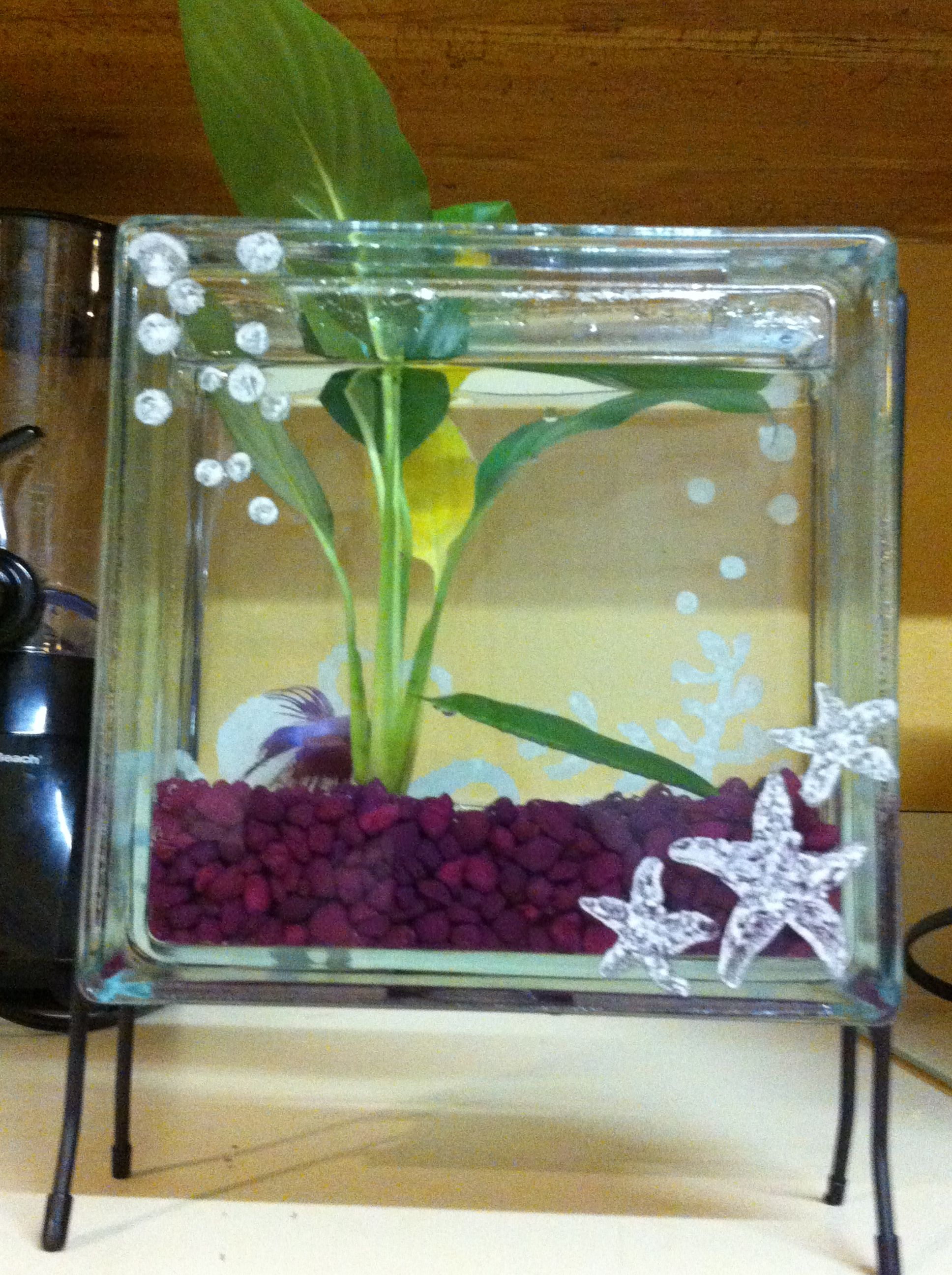 Bata fish tank made from a crafty block with echit paint