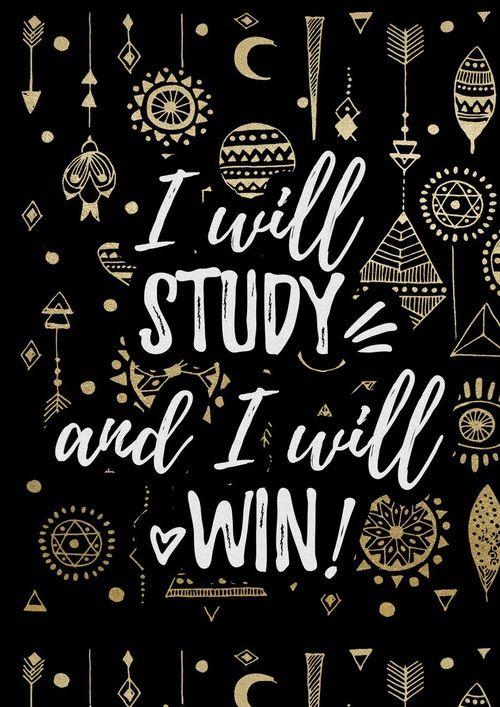 study Tumblr