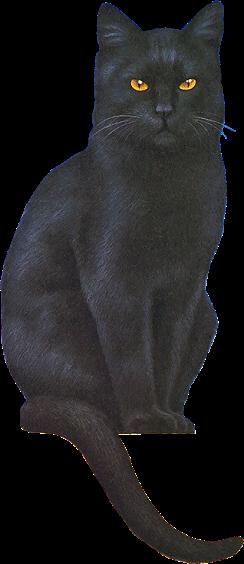 cat art schwarze katze