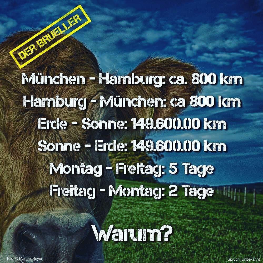 münchen hamburg sonne erde freitag montag spruch sprüche
