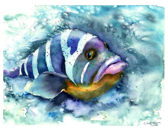 Fish Painting Original Watercolor Underwater Artwork Aquatic