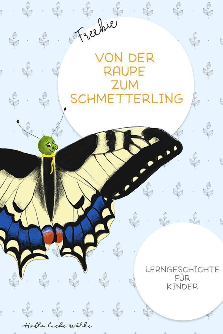 Lukas hat Hunger Von der Raupe zum Schmetterling. Eine