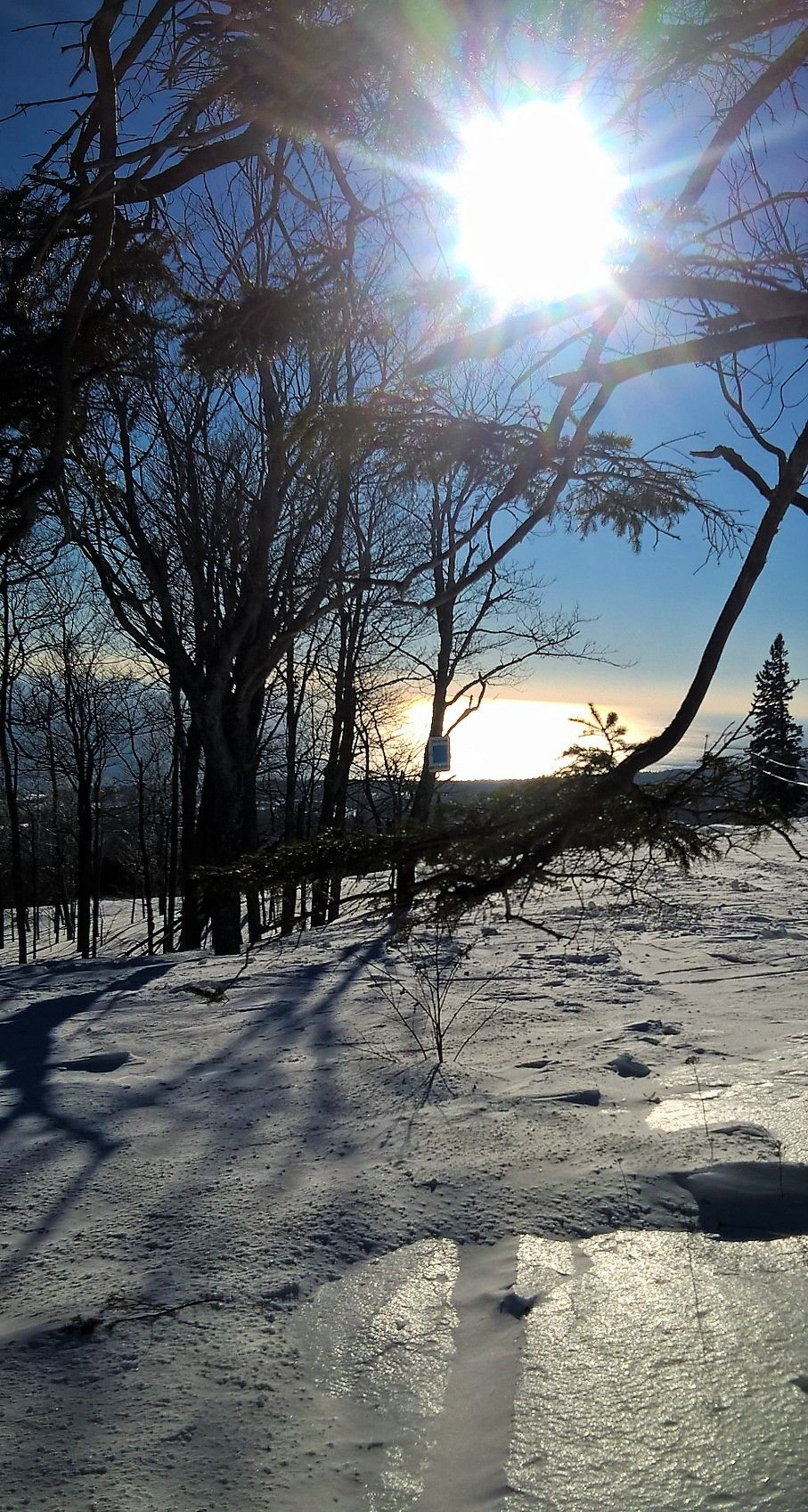 Up, up and away! The wild blue yonder held beautiful vistas at Lutsen Mountains over MLK weekend.