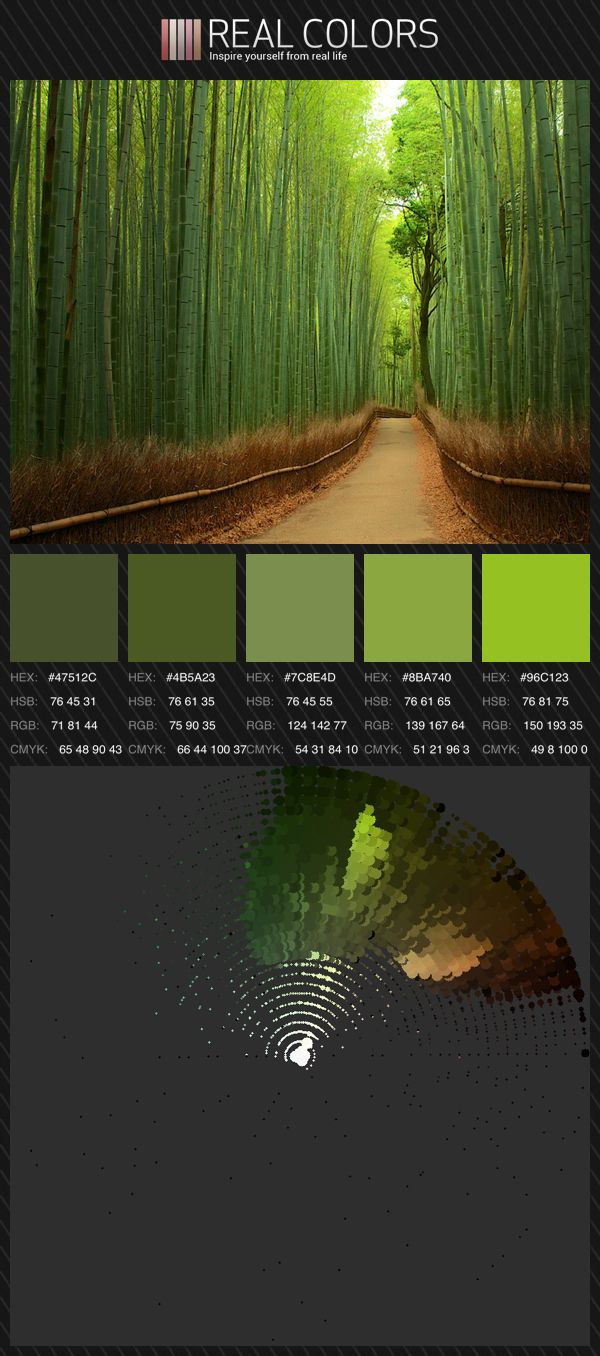 All green - Monochromatic color palette | Color wheels by Real ...