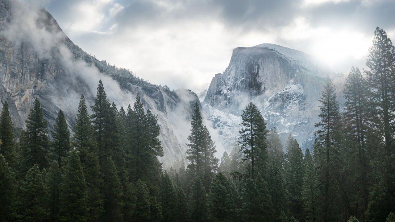 Yosemite 5k Wallpapers Forest Osx Apple Mountains Fondos De Pantalla Bosques Fondos Bosque Fondos Para Computadora